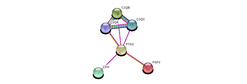 http://string-db.org/version_10/api/image/networkList?limit=0&targetmode=proteins&caller_identity=gene_cards&network_flavor=evidence&identifiers=9606.ENSP00000295927%0d%0a9606.ENSP00000313967%0d%0a9606.ENSP00000264498%0d%0a9606.ENSP00000363768%0d%0a9606.ENSP00000363773%0d%0a9606.ENSP00000356399%0d%0a