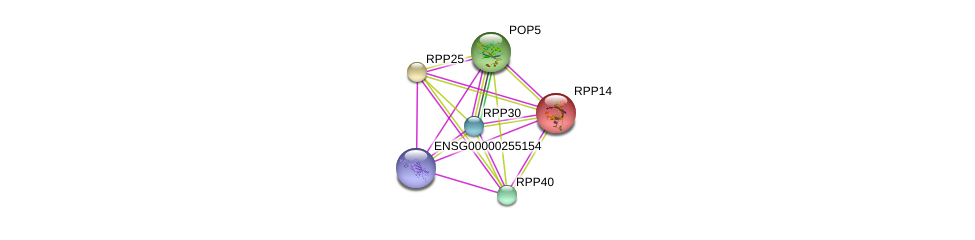 http://string-db.org/version_10/api/image/networkList?limit=0&targetmode=proteins&caller_identity=gene_cards&network_flavor=evidence&identifiers=9606.ENSP00000295959%0d%0a9606.ENSP00000389182%0d%0a9606.ENSP00000350098%0d%0a9606.ENSP00000437142%0d%0a9606.ENSP00000369391%0d%0a9606.ENSP00000317691%0d%0a