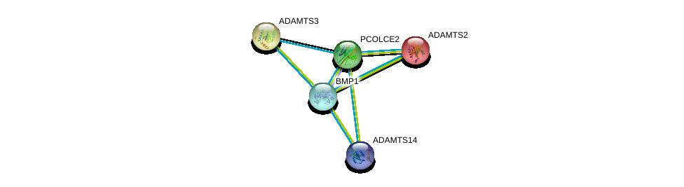 http://string-db.org/version_10/api/image/networkList?limit=0&targetmode=proteins&caller_identity=gene_cards&network_flavor=evidence&identifiers=9606.ENSP00000295992%0d%0a9606.ENSP00000251582%0d%0a9606.ENSP00000286657%0d%0a9606.ENSP00000362304%0d%0a9606.ENSP00000305714%0d%0a