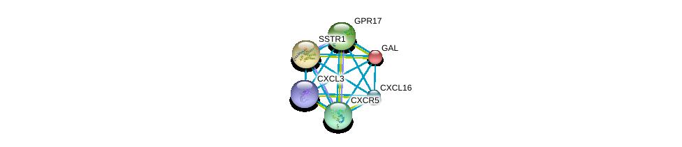 http://string-db.org/version_10/api/image/networkList?limit=0&targetmode=proteins&caller_identity=gene_cards&network_flavor=evidence&identifiers=9606.ENSP00000296026%0d%0a9606.ENSP00000293778%0d%0a9606.ENSP00000292174%0d%0a9606.ENSP00000272644%0d%0a9606.ENSP00000267377%0d%0a9606.ENSP00000265643%0d%0a