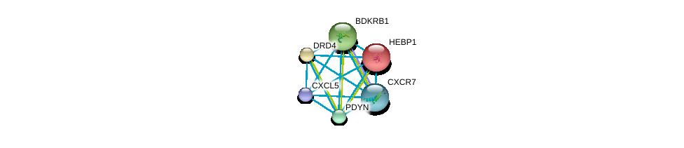 http://string-db.org/version_10/api/image/networkList?limit=0&targetmode=proteins&caller_identity=gene_cards&network_flavor=evidence&identifiers=9606.ENSP00000296027%0d%0a9606.ENSP00000272928%0d%0a9606.ENSP00000014930%0d%0a9606.ENSP00000176183%0d%0a9606.ENSP00000216629%0d%0a9606.ENSP00000217305%0d%0a