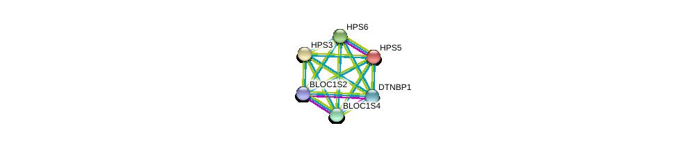 http://string-db.org/version_10/api/image/networkList?limit=0&targetmode=proteins&caller_identity=gene_cards&network_flavor=evidence&identifiers=9606.ENSP00000296051%0d%0a9606.ENSP00000359398%0d%0a9606.ENSP00000341680%0d%0a9606.ENSP00000299238%0d%0a9606.ENSP00000318128%0d%0a9606.ENSP00000265967%0d%0a