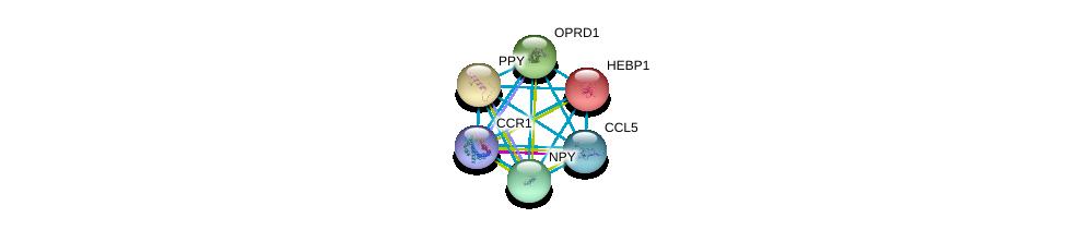 http://string-db.org/version_10/api/image/networkList?limit=0&targetmode=proteins&caller_identity=gene_cards&network_flavor=evidence&identifiers=9606.ENSP00000296140%0d%0a9606.ENSP00000293272%0d%0a9606.ENSP00000014930%0d%0a9606.ENSP00000225992%0d%0a9606.ENSP00000234961%0d%0a9606.ENSP00000242152%0d%0a