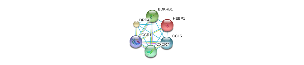 http://string-db.org/version_10/api/image/networkList?limit=0&targetmode=proteins&caller_identity=gene_cards&network_flavor=evidence&identifiers=9606.ENSP00000296140%0d%0a9606.ENSP00000293272%0d%0a9606.ENSP00000272928%0d%0a9606.ENSP00000014930%0d%0a9606.ENSP00000176183%0d%0a9606.ENSP00000216629%0d%0a