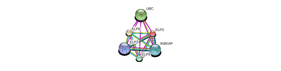 http://string-db.org/version_10/api/image/networkList?limit=0&targetmode=proteins&caller_identity=gene_cards&network_flavor=evidence&identifiers=9606.ENSP00000296149%0d%0a9606.ENSP00000414851%0d%0a9606.ENSP00000363779%0d%0a9606.ENSP00000256398%0d%0a9606.ENSP00000344818%0d%0a9606.ENSP00000346412%0d%0a