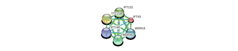 http://string-db.org/version_10/api/image/networkList?limit=0&targetmode=proteins&caller_identity=gene_cards&network_flavor=evidence&identifiers=9606.ENSP00000296266%0d%0a9606.ENSP00000243344%0d%0a9606.ENSP00000382717%0d%0a9606.ENSP00000406012%0d%0a9606.ENSP00000238628%0d%0a9606.ENSP00000314444%0d%0a