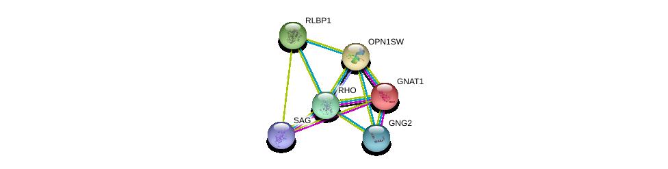 http://string-db.org/version_10/api/image/networkList?limit=0&targetmode=proteins&caller_identity=gene_cards&network_flavor=evidence&identifiers=9606.ENSP00000296271%0d%0a9606.ENSP00000232461%0d%0a9606.ENSP00000386444%0d%0a9606.ENSP00000249389%0d%0a9606.ENSP00000268125%0d%0a9606.ENSP00000334448%0d%0a