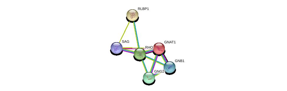 http://string-db.org/version_10/api/image/networkList?limit=0&targetmode=proteins&caller_identity=gene_cards&network_flavor=evidence&identifiers=9606.ENSP00000296271%0d%0a9606.ENSP00000232461%0d%0a9606.ENSP00000386444%0d%0a9606.ENSP00000367869%0d%0a9606.ENSP00000334448%0d%0a9606.ENSP00000268125%0d%0a