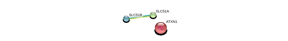 http://string-db.org/version_10/api/image/networkList?limit=0&targetmode=proteins&caller_identity=gene_cards&network_flavor=evidence&identifiers=9606.ENSP00000296327%0d%0a9606.ENSP00000335292%0d%0a9606.ENSP00000244769%0d%0a