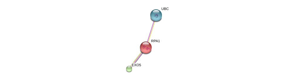 http://string-db.org/version_10/api/image/networkList?limit=0&targetmode=proteins&caller_identity=gene_cards&network_flavor=evidence&identifiers=9606.ENSP00000296380%0d%0a9606.ENSP00000254719%0d%0a9606.ENSP00000344818%0d%0a