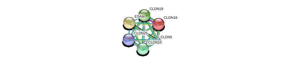 http://string-db.org/version_10/api/image/networkList?limit=0&targetmode=proteins&caller_identity=gene_cards&network_flavor=evidence&identifiers=9606.ENSP00000296387%0d%0a9606.ENSP00000264734%0d%0a9606.ENSP00000299339%0d%0a9606.ENSP00000384554%0d%0a9606.ENSP00000396304%0d%0a9606.ENSP00000278927%0d%0a