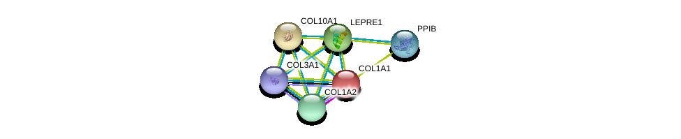 http://string-db.org/version_10/api/image/networkList?limit=0&targetmode=proteins&caller_identity=gene_cards&network_flavor=evidence&identifiers=9606.ENSP00000296388%0d%0a9606.ENSP00000225964%0d%0a9606.ENSP00000243222%0d%0a9606.ENSP00000297268%0d%0a9606.ENSP00000300026%0d%0a9606.ENSP00000304408%0d%0a