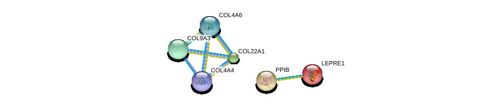 http://string-db.org/version_10/api/image/networkList?limit=0&targetmode=proteins&caller_identity=gene_cards&network_flavor=evidence&identifiers=9606.ENSP00000296388%0d%0a9606.ENSP00000361290%0d%0a9606.ENSP00000341640%0d%0a9606.ENSP00000303153%0d%0a9606.ENSP00000379866%0d%0a9606.ENSP00000300026%0d%0a