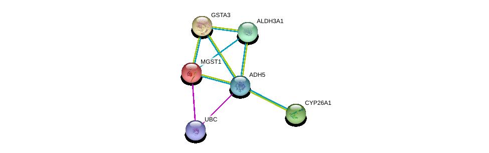 http://string-db.org/version_10/api/image/networkList?limit=0&targetmode=proteins&caller_identity=gene_cards&network_flavor=evidence&identifiers=9606.ENSP00000296412%0d%0a9606.ENSP00000344818%0d%0a9606.ENSP00000010404%0d%0a9606.ENSP00000211122%0d%0a9606.ENSP00000224356%0d%0a9606.ENSP00000225740%0d%0a