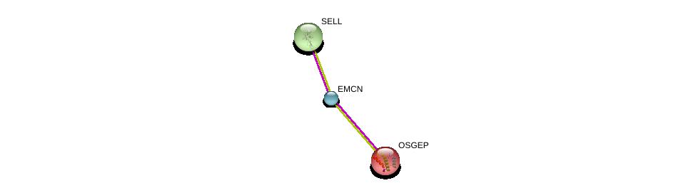 http://string-db.org/version_10/api/image/networkList?limit=0&targetmode=proteins&caller_identity=gene_cards&network_flavor=evidence&identifiers=9606.ENSP00000296420%0d%0a9606.ENSP00000206542%0d%0a9606.ENSP00000236147%0d%0a