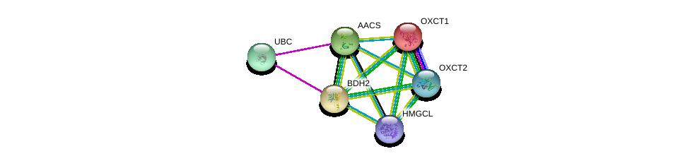 http://string-db.org/version_10/api/image/networkList?limit=0&targetmode=proteins&caller_identity=gene_cards&network_flavor=evidence&identifiers=9606.ENSP00000296424%0d%0a9606.ENSP00000363614%0d%0a9606.ENSP00000361914%0d%0a9606.ENSP00000196371%0d%0a9606.ENSP00000324842%0d%0a9606.ENSP00000344818%0d%0a