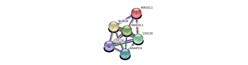 http://string-db.org/version_10/api/image/networkList?limit=0&targetmode=proteins&caller_identity=gene_cards&network_flavor=evidence&identifiers=9606.ENSP00000296509%0d%0a9606.ENSP00000287598%0d%0a9606.ENSP00000308450%0d%0a9606.ENSP00000318775%0d%0a9606.ENSP00000265854%0d%0a9606.ENSP00000348554%0d%0a