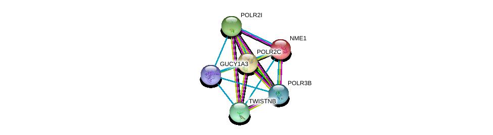 http://string-db.org/version_10/api/image/networkList?limit=0&targetmode=proteins&caller_identity=gene_cards&network_flavor=evidence&identifiers=9606.ENSP00000296518%0d%0a9606.ENSP00000013034%0d%0a9606.ENSP00000219252%0d%0a9606.ENSP00000221859%0d%0a9606.ENSP00000222567%0d%0a9606.ENSP00000228347%0d%0a
