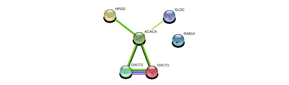 http://string-db.org/version_10/api/image/networkList?limit=0&targetmode=proteins&caller_identity=gene_cards&network_flavor=evidence&identifiers=9606.ENSP00000296522%0d%0a9606.ENSP00000362946%0d%0a9606.ENSP00000361914%0d%0a9606.ENSP00000196371%0d%0a9606.ENSP00000370737%0d%0a9606.ENSP00000344789%0d%0a