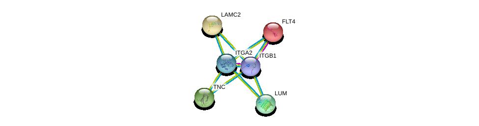 http://string-db.org/version_10/api/image/networkList?limit=0&targetmode=proteins&caller_identity=gene_cards&network_flavor=evidence&identifiers=9606.ENSP00000296585%0d%0a9606.ENSP00000303351%0d%0a9606.ENSP00000261937%0d%0a9606.ENSP00000264144%0d%0a9606.ENSP00000265131%0d%0a9606.ENSP00000266718%0d%0a