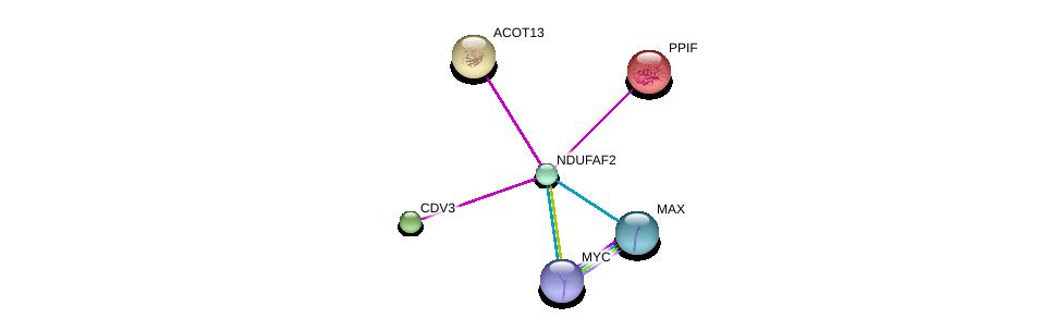 http://string-db.org/version_10/api/image/networkList?limit=0&targetmode=proteins&caller_identity=gene_cards&network_flavor=evidence&identifiers=9606.ENSP00000296597%0d%0a9606.ENSP00000351490%0d%0a9606.ENSP00000367207%0d%0a9606.ENSP00000225174%0d%0a9606.ENSP00000230048%0d%0a9606.ENSP00000264993%0d%0a