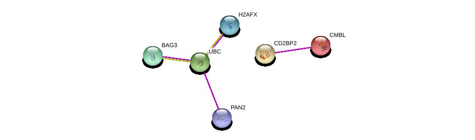 http://string-db.org/version_10/api/image/networkList?limit=0&targetmode=proteins&caller_identity=gene_cards&network_flavor=evidence&identifiers=9606.ENSP00000296658%0d%0a9606.ENSP00000304903%0d%0a9606.ENSP00000344818%0d%0a9606.ENSP00000401721%0d%0a9606.ENSP00000358081%0d%0a9606.ENSP00000364310%0d%0a