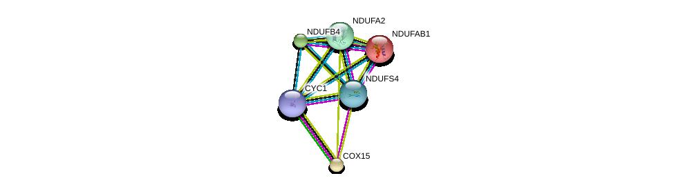 http://string-db.org/version_10/api/image/networkList?limit=0&targetmode=proteins&caller_identity=gene_cards&network_flavor=evidence&identifiers=9606.ENSP00000296684%0d%0a9606.ENSP00000252102%0d%0a9606.ENSP00000007516%0d%0a9606.ENSP00000016171%0d%0a9606.ENSP00000317159%0d%0a9606.ENSP00000184266%0d%0a