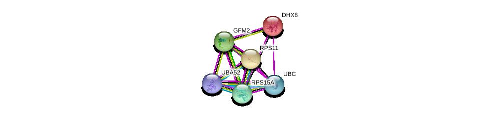 http://string-db.org/version_10/api/image/networkList?limit=0&targetmode=proteins&caller_identity=gene_cards&network_flavor=evidence&identifiers=9606.ENSP00000296805%0d%0a9606.ENSP00000262415%0d%0a9606.ENSP00000344818%0d%0a9606.ENSP00000388107%0d%0a9606.ENSP00000318646%0d%0a9606.ENSP00000270625%0d%0a