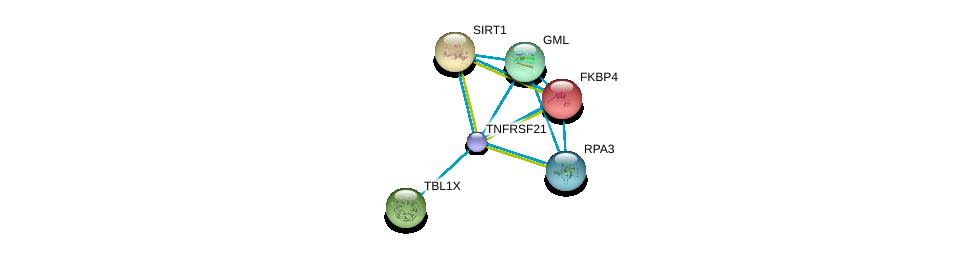http://string-db.org/version_10/api/image/networkList?limit=0&targetmode=proteins&caller_identity=gene_cards&network_flavor=evidence&identifiers=9606.ENSP00000296861%0d%0a9606.ENSP00000001008%0d%0a9606.ENSP00000212015%0d%0a9606.ENSP00000217964%0d%0a9606.ENSP00000220940%0d%0a9606.ENSP00000223129%0d%0a