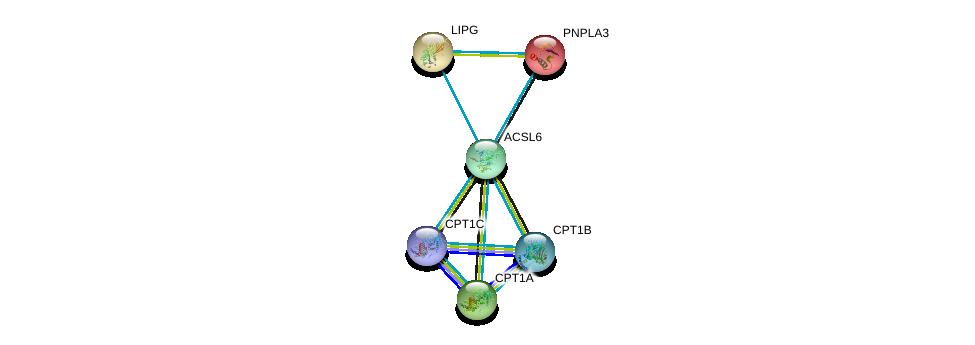 http://string-db.org/version_10/api/image/networkList?limit=0&targetmode=proteins&caller_identity=gene_cards&network_flavor=evidence&identifiers=9606.ENSP00000296869%0d%0a9606.ENSP00000265641%0d%0a9606.ENSP00000312189%0d%0a9606.ENSP00000319343%0d%0a9606.ENSP00000216180%0d%0a9606.ENSP00000261292%0d%0a