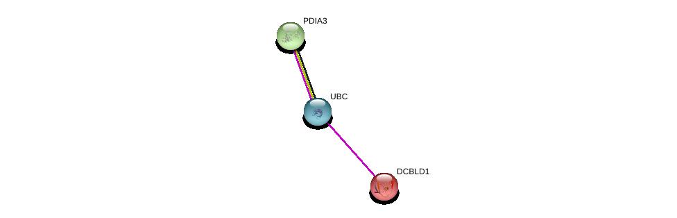 http://string-db.org/version_10/api/image/networkList?limit=0&targetmode=proteins&caller_identity=gene_cards&network_flavor=evidence&identifiers=9606.ENSP00000296955%0d%0a9606.ENSP00000344818%0d%0a9606.ENSP00000300289%0d%0a
