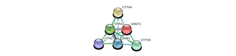 http://string-db.org/version_10/api/image/networkList?limit=0&targetmode=proteins&caller_identity=gene_cards&network_flavor=evidence&identifiers=9606.ENSP00000297044%0d%0a9606.ENSP00000248572%0d%0a9606.ENSP00000408236%0d%0a9606.ENSP00000367869%0d%0a9606.ENSP00000275364%0d%0a9606.ENSP00000248901%0d%0a