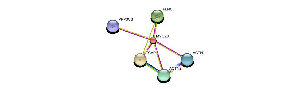 http://string-db.org/version_10/api/image/networkList?limit=0&targetmode=proteins&caller_identity=gene_cards&network_flavor=evidence&identifiers=9606.ENSP00000297130%0d%0a9606.ENSP00000312624%0d%0a9606.ENSP00000327145%0d%0a9606.ENSP00000355537%0d%0a9606.ENSP00000377941%0d%0a9606.ENSP00000378306%0d%0a