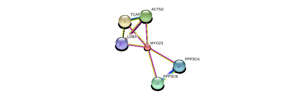 http://string-db.org/version_10/api/image/networkList?limit=0&targetmode=proteins&caller_identity=gene_cards&network_flavor=evidence&identifiers=9606.ENSP00000297130%0d%0a9606.ENSP00000401437%0d%0a9606.ENSP00000355537%0d%0a9606.ENSP00000378306%0d%0a9606.ENSP00000312624%0d%0a9606.ENSP00000378323%0d%0a