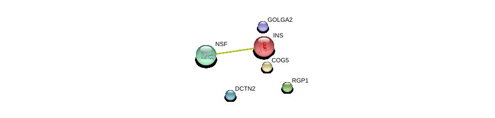 http://string-db.org/version_10/api/image/networkList?limit=0&targetmode=proteins&caller_identity=gene_cards&network_flavor=evidence&identifiers=9606.ENSP00000297135%0d%0a9606.ENSP00000416097%0d%0a9606.ENSP00000381293%0d%0a9606.ENSP00000367318%0d%0a9606.ENSP00000408910%0d%0a9606.ENSP00000250971%0d%0a