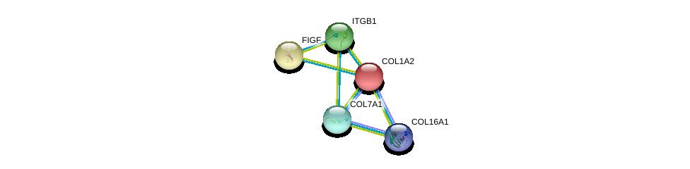 http://string-db.org/version_10/api/image/networkList?limit=0&targetmode=proteins&caller_identity=gene_cards&network_flavor=evidence&identifiers=9606.ENSP00000297268%0d%0a9606.ENSP00000303351%0d%0a9606.ENSP00000332371%0d%0a9606.ENSP00000332371%0d%0a9606.ENSP00000297904%0d%0a9606.ENSP00000362776%0d%0a