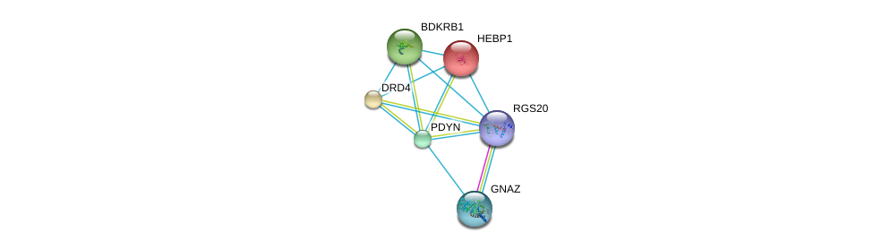 http://string-db.org/version_10/api/image/networkList?limit=0&targetmode=proteins&caller_identity=gene_cards&network_flavor=evidence&identifiers=9606.ENSP00000297313%0d%0a9606.ENSP00000248996%0d%0a9606.ENSP00000014930%0d%0a9606.ENSP00000176183%0d%0a9606.ENSP00000216629%0d%0a9606.ENSP00000217305%0d%0a
