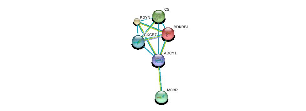 http://string-db.org/version_10/api/image/networkList?limit=0&targetmode=proteins&caller_identity=gene_cards&network_flavor=evidence&identifiers=9606.ENSP00000297323%0d%0a9606.ENSP00000272928%0d%0a9606.ENSP00000223642%0d%0a9606.ENSP00000217305%0d%0a9606.ENSP00000243911%0d%0a9606.ENSP00000216629%0d%0a