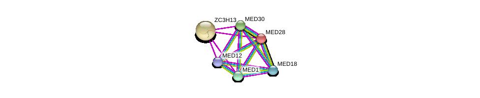 http://string-db.org/version_10/api/image/networkList?limit=0&targetmode=proteins&caller_identity=gene_cards&network_flavor=evidence&identifiers=9606.ENSP00000297347%0d%0a9606.ENSP00000362948%0d%0a9606.ENSP00000363193%0d%0a9606.ENSP00000300651%0d%0a9606.ENSP00000237380%0d%0a9606.ENSP00000282007%0d%0a