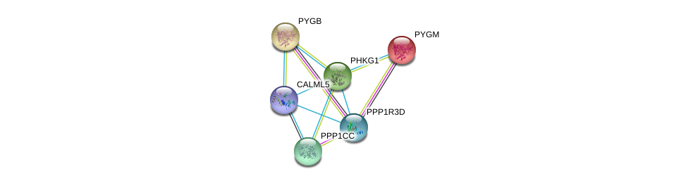 http://string-db.org/version_10/api/image/networkList?limit=0&targetmode=proteins&caller_identity=gene_cards&network_flavor=evidence&identifiers=9606.ENSP00000297373%0d%0a9606.ENSP00000164139%0d%0a9606.ENSP00000216962%0d%0a9606.ENSP00000360035%0d%0a9606.ENSP00000335084%0d%0a9606.ENSP00000369689%0d%0a