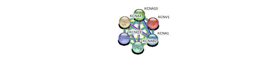 http://string-db.org/version_10/api/image/networkList?limit=0&targetmode=proteins&caller_identity=gene_cards&network_flavor=evidence&identifiers=9606.ENSP00000297404%0d%0a9606.ENSP00000371985%0d%0a9606.ENSP00000328511%0d%0a9606.ENSP00000373648%0d%0a9606.ENSP00000358786%0d%0a9606.ENSP00000367323%0d%0a