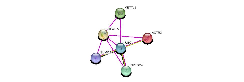 http://string-db.org/version_10/api/image/networkList?limit=0&targetmode=proteins&caller_identity=gene_cards&network_flavor=evidence&identifiers=9606.ENSP00000297440%0d%0a9606.ENSP00000344818%0d%0a9606.ENSP00000405965%0d%0a9606.ENSP00000263238%0d%0a9606.ENSP00000314441%0d%0a9606.ENSP00000331487%0d%0a