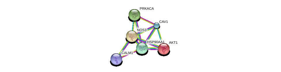 http://string-db.org/version_10/api/image/networkList?limit=0&targetmode=proteins&caller_identity=gene_cards&network_flavor=evidence&identifiers=9606.ENSP00000297494%0d%0a9606.ENSP00000270202%0d%0a9606.ENSP00000335153%0d%0a9606.ENSP00000349467%0d%0a9606.ENSP00000339191%0d%0a9606.ENSP00000309591%0d%0a