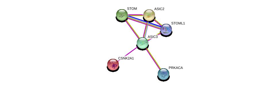 http://string-db.org/version_10/api/image/networkList?limit=0&targetmode=proteins&caller_identity=gene_cards&network_flavor=evidence&identifiers=9606.ENSP00000297512%0d%0a9606.ENSP00000319323%0d%0a9606.ENSP00000286713%0d%0a9606.ENSP00000217244%0d%0a9606.ENSP00000225823%0d%0a9606.ENSP00000309591%0d%0a