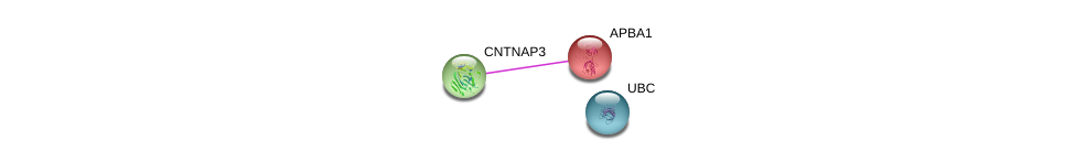 http://string-db.org/version_10/api/image/networkList?limit=0&targetmode=proteins&caller_identity=gene_cards&network_flavor=evidence&identifiers=9606.ENSP00000297668%0d%0a9606.ENSP00000265381%0d%0a9606.ENSP00000344818%0d%0a