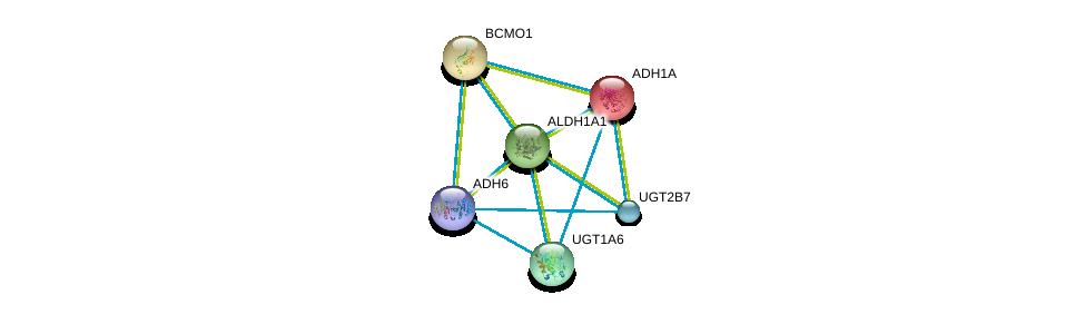 http://string-db.org/version_10/api/image/networkList?limit=0&targetmode=proteins&caller_identity=gene_cards&network_flavor=evidence&identifiers=9606.ENSP00000297785%0d%0a9606.ENSP00000209668%0d%0a9606.ENSP00000378359%0d%0a9606.ENSP00000258168%0d%0a9606.ENSP00000303174%0d%0a9606.ENSP00000304811%0d%0a