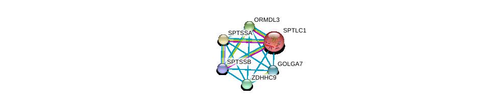 http://string-db.org/version_10/api/image/networkList?limit=0&targetmode=proteins&caller_identity=gene_cards&network_flavor=evidence&identifiers=9606.ENSP00000298130%0d%0a9606.ENSP00000352097%0d%0a9606.ENSP00000304858%0d%0a9606.ENSP00000350378%0d%0a9606.ENSP00000349689%0d%0a9606.ENSP00000262554%0d%0a