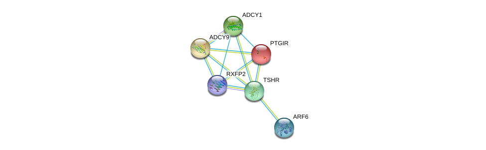 http://string-db.org/version_10/api/image/networkList?limit=0&targetmode=proteins&caller_identity=gene_cards&network_flavor=evidence&identifiers=9606.ENSP00000298171%0d%0a9606.ENSP00000291294%0d%0a9606.ENSP00000294016%0d%0a9606.ENSP00000297323%0d%0a9606.ENSP00000298316%0d%0a9606.ENSP00000298386%0d%0a