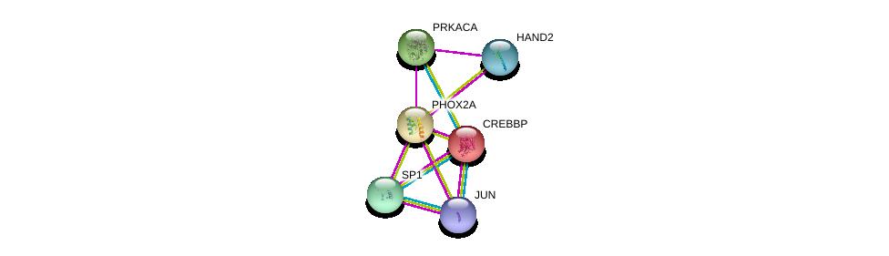 http://string-db.org/version_10/api/image/networkList?limit=0&targetmode=proteins&caller_identity=gene_cards&network_flavor=evidence&identifiers=9606.ENSP00000298231%0d%0a9606.ENSP00000352565%0d%0a9606.ENSP00000309591%0d%0a9606.ENSP00000262367%0d%0a9606.ENSP00000329357%0d%0a9606.ENSP00000360266%0d%0a