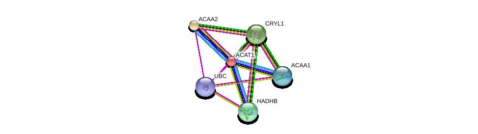 http://string-db.org/version_10/api/image/networkList?limit=0&targetmode=proteins&caller_identity=gene_cards&network_flavor=evidence&identifiers=9606.ENSP00000298248%0d%0a9606.ENSP00000344818%0d%0a9606.ENSP00000285093%0d%0a9606.ENSP00000333664%0d%0a9606.ENSP00000265838%0d%0a9606.ENSP00000325136%0d%0a